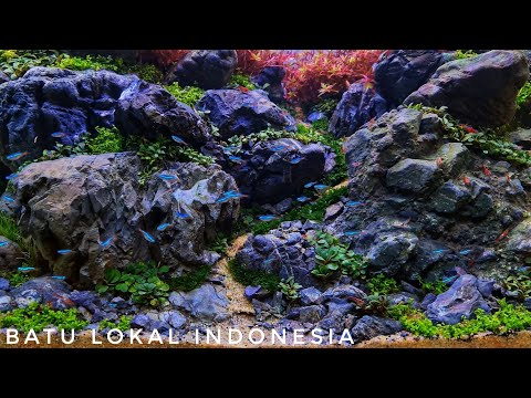 #244 Brazilian style aquascape with local Indonesian rocks