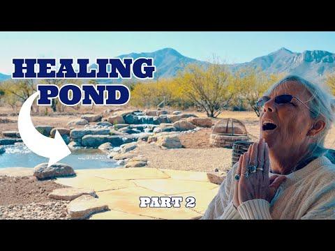 Healing Pond part 2 | Serenity Water Garden