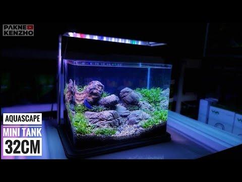 #242 Membuat Aquascape tanpa injeksi co2 dan filter