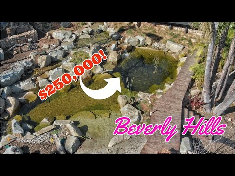 Beverly Hills NATURAL POOL *Recreation Pond* part 2
