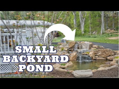 WATER GARDEN for a SMALL BACKYARD