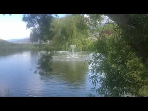 Skaha Water Gardens 2021 Video1