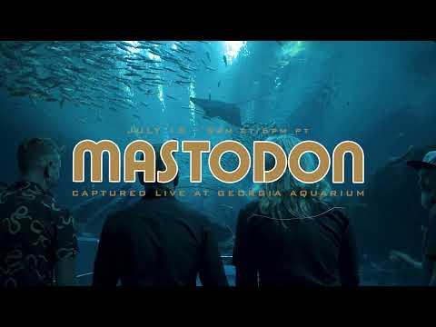 Mastodon Live Performance Experience At Georgia Aquarium