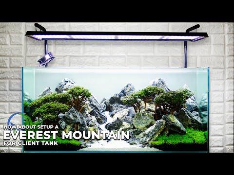 MOUNTAIN LANDSCAPE AQUASCAPE
