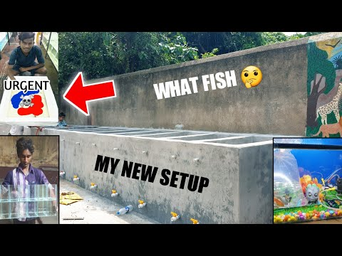 *New* My 40ft Pond Update   SPV Aquarium Monster Fish unboxing   how to make fish pond biofloc india