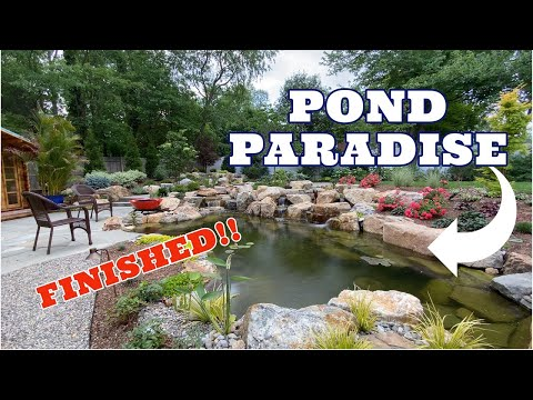 POND PARADISE – Complete Backyard Transformation |FINISHED