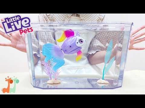 ユニコーンフィッシュ アクアリウム おもちゃ / Aquarium Toy! Little Live Pets Lil Dippers Fish Playset