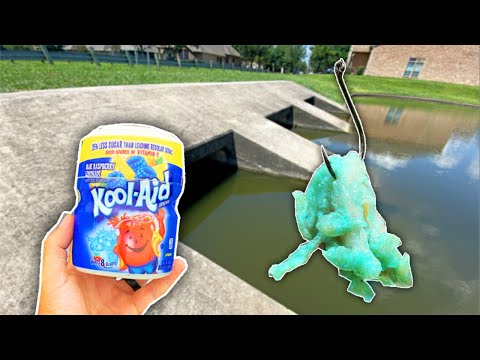 BIG Pond Fish *CAN'T RESIST* Kool-Aid Chicken Breasts! (Best Pond Bait)