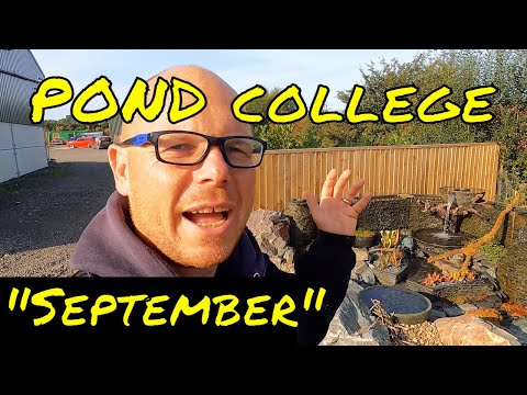 POND college (SEPTEMBER Update) – New Water Features UK