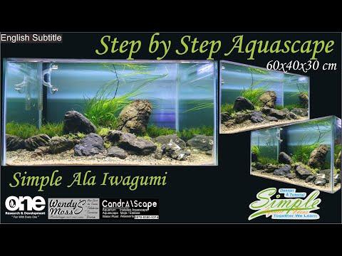 Step by Step Simple Aquascape Tema Ala Iwagumi Tank 60 cm
