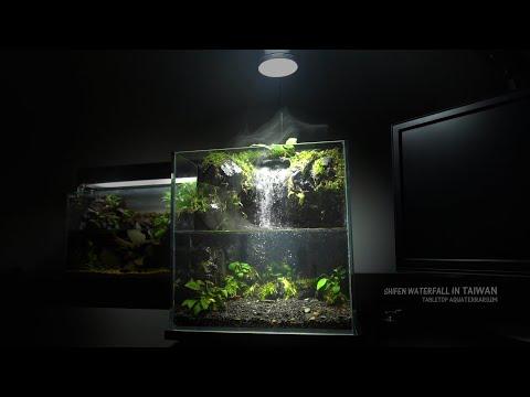 How To Make Amazing Waterfall in Aquaterrarium   Shifen Waterfall Aquascape